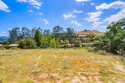 Fallbrook Residential Lots & Land For Sale: 40485 Rock Mountain Drive