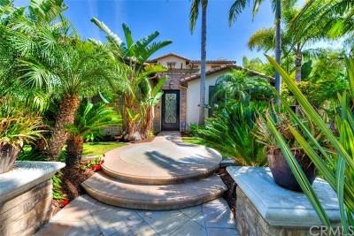 San Clemente Single Family Home For Sale: 8 Corte De Nubes