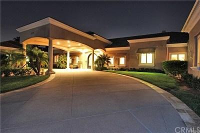 Yorba Linda Single Family Home For Sale: 4490 Ohio Street