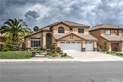 Chino Hills Single Family Home For Sale: 1475 Rancho Hills Drive