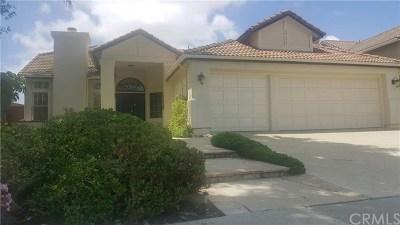 Single Family Home For Sale: 24645 Royale Ridge