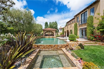 San Clemente Single Family Home For Sale: 19 Via Conocido