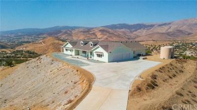 Agua Dulce Single Family Home For Sale: 35101 Penman Road