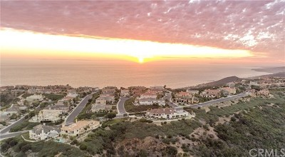 Laguna Niguel Single Family Home For Sale: 22782 Channel View