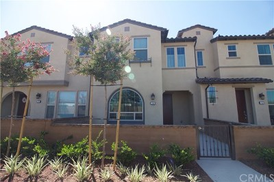 Rental For Rent: 30 Prominence