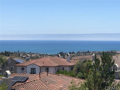 San Clemente Single Family Home For Sale: 2810 Canto Nubiado