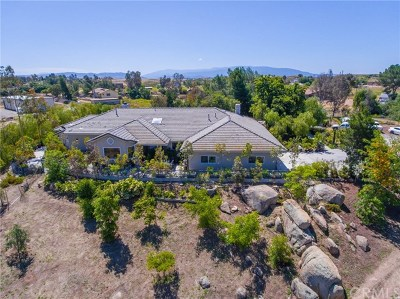 Winchester, French Valley Single Family Home For Sale: 32295 Buena Ventura Road