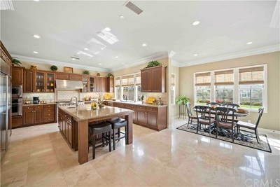 San Juan Capistrano Single Family Home For Sale: 27391 Via Priorato