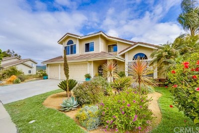 Dana Point Single Family Home Active Under Contract: 24381 Philemon Drive