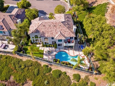 Rancho Santa Margarita Single Family Home For Sale: 95 Bell Canyon Drive