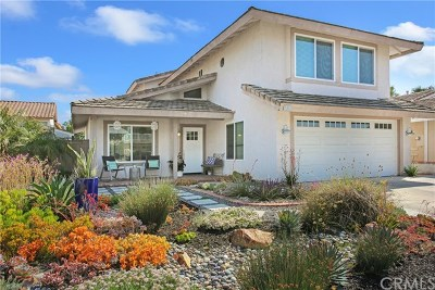 Rancho Santa Margarita Single Family Home For Sale: 22 Via Latigo