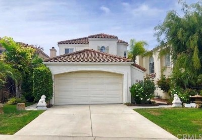 Dana Point  Single Family Home For Sale: 7 Duquesa