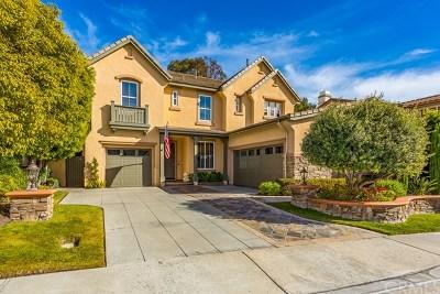 San Clemente Single Family Home For Sale: 111 Via Reseda