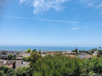 San Clemente Rental For Rent: 213 Calle Sonora