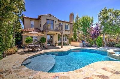 San Clemente Single Family Home For Sale: 28 Via Balcon