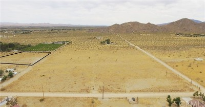 Lucerne Valley Residential Lots & Land For Sale: Cody Road (2.28)