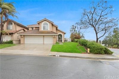 Trabuco Canyon Single Family Home For Sale: 2 Sugarpine Drive