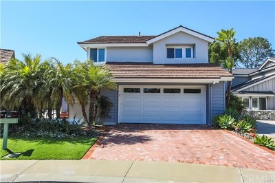 Dana Point Single Family Home For Sale: 24901 Danamaple