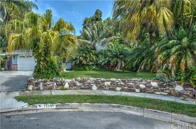 Dana Point Single Family Home For Sale: 25501 Westborne Drive