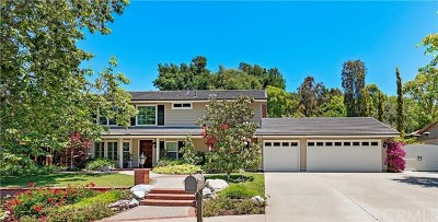 Laguna Hills Single Family Home For Sale: 27232 Lost Colt Drive