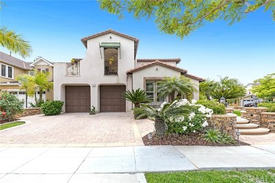 Ladera Ranch Single Family Home For Sale: 6 Ardennes Drive
