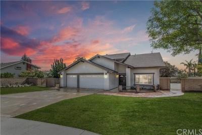 Upland Single Family Home For Sale: 1168 Deborah Street