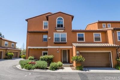Irvine Condo/Townhouse For Sale: 143 Pathway