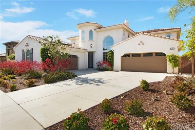 San Juan Capistrano Single Family Home For Sale: 29261 Via Zamora