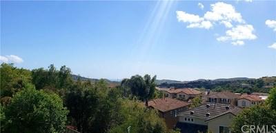 San Clemente Single Family Home For Sale: 478 Camino Flora Vista
