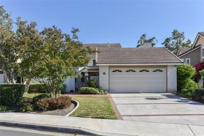 Single Family Home For Sale: 48 Sunlight