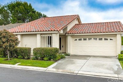 Mission Viejo Single Family Home For Sale: 28427 Alava