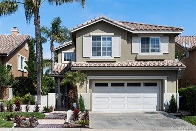San Clemente Single Family Home For Sale: 14 Chapital