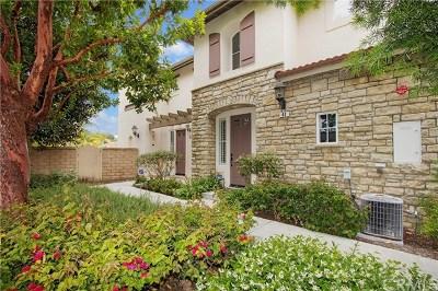 San Clemente Condo/Townhouse For Sale: 42 Avenida Brio