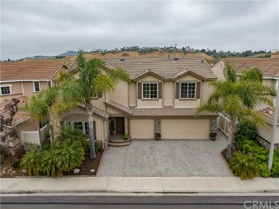 San Clemente CA Single Family Home For Sale: $1,490,000