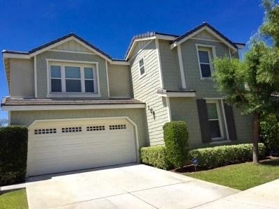 Temecula Single Family Home For Sale: 29009 Savannah Drive