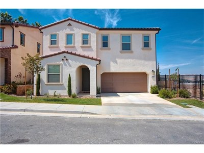 Corona Single Family Home For Sale: 1893 Marquez Way