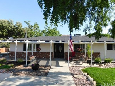 Menifee Single Family Home For Sale: 24320 S Canyon Drive
