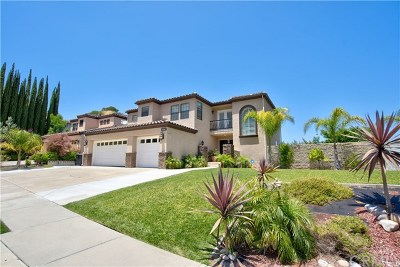 Corona Single Family Home For Sale: 3251 Star Canyon Circle