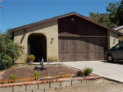 Lake Elsinore Single Family Home For Sale: 33236 Schaper Street