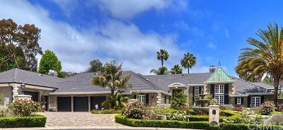 San Juan Capistrano Single Family Home For Sale: 26002 Via Arboleda