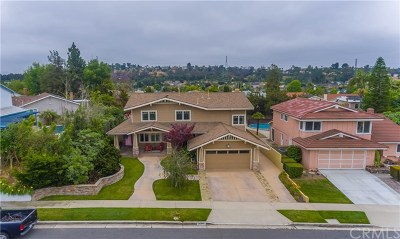 Laguna Hills Single Family Home For Sale: 25252 Earhart Road