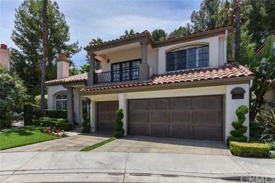 Newport Beach Single Family Home For Sale: 2941 Corte Portofino