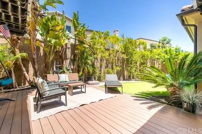 Single Family Home For Sale: 264 Desert Bloom