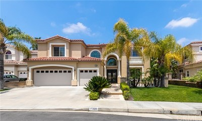 Yorba Linda Single Family Home For Auction: 17238 Blue Spruce Lane