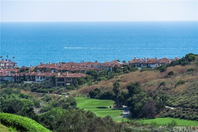Dana Point Single Family Home For Sale: 3 San Raphael