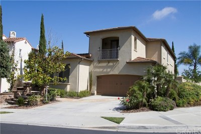 San Clemente Single Family Home For Sale: 76 Via Regalo