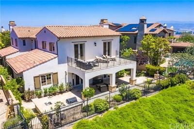 Single Family Home For Sale: 519 Luminous