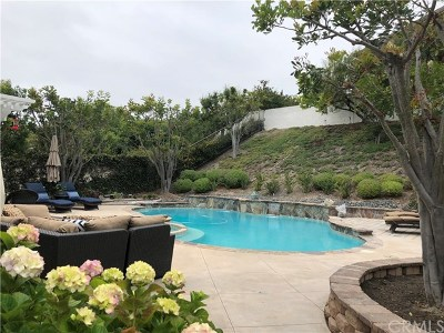 San Clemente Single Family Home For Sale: 43 Via Belleza