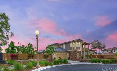 Irvine Single Family Home For Sale: 100 Nickel