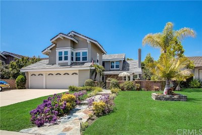 Single Family Home For Sale: 27742 Paseo Esteban